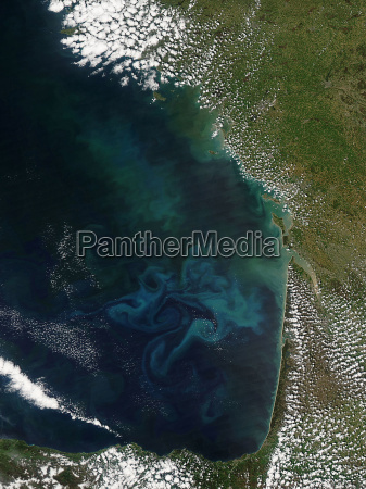 bay of biscay showing a phytoplankon
