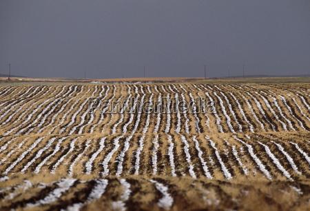rural landscape montana