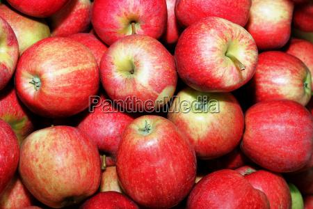 food aliment vitamins vitamines closeup ripe