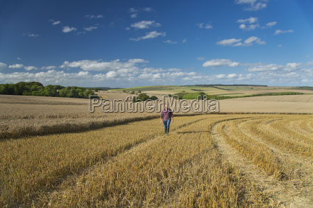 azul ir agricola agricultura campo verao